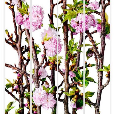 Delamour_CherryBlossomPolyptych_