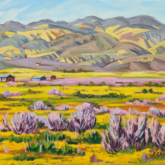 Spring Flowers on the Carriza Plain, 24 x 30 inches